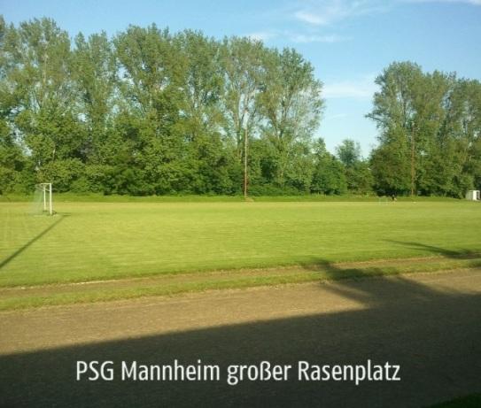 großer Rasenplatz